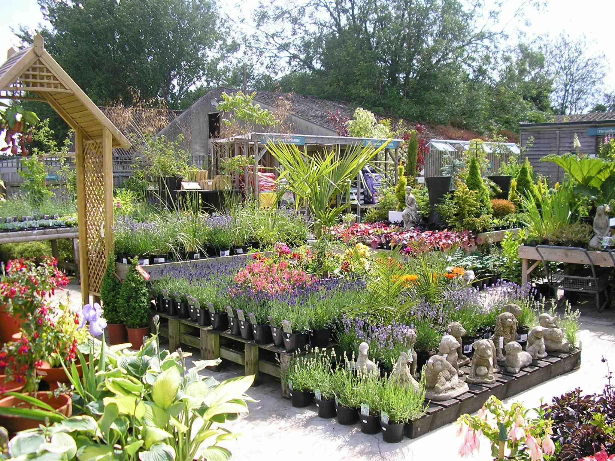 Plant area